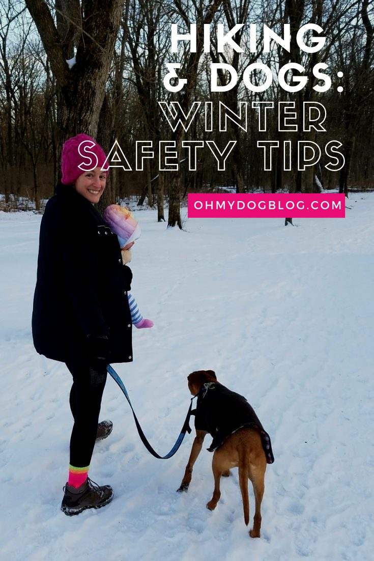 Hiking With Dogs: 5 Winter Safety Tips