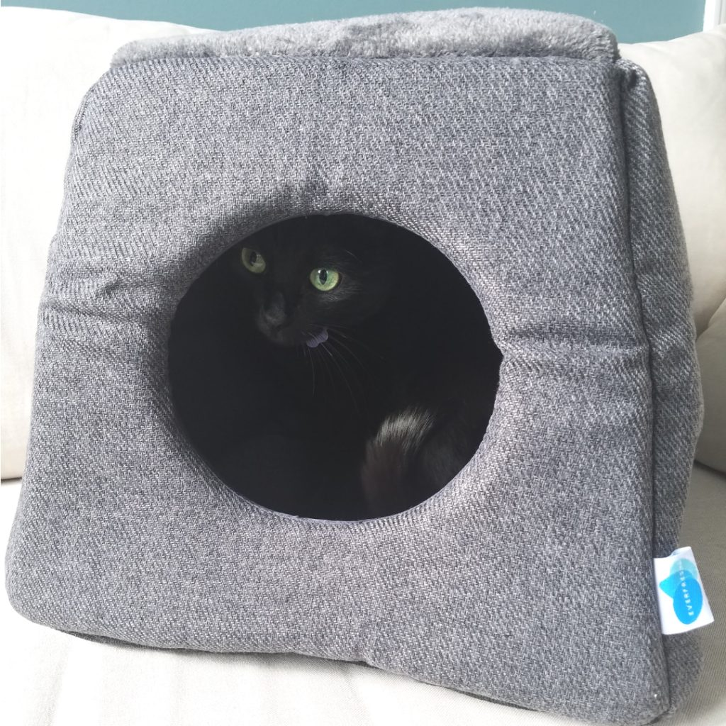 Messy Cats Bed
