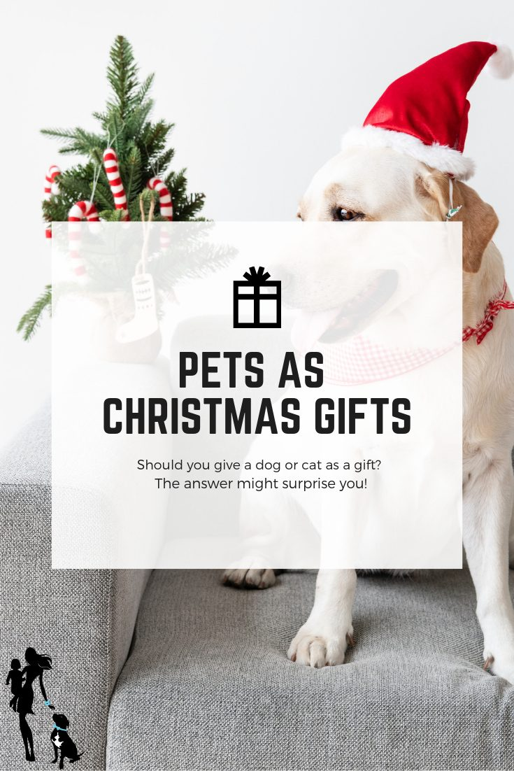 Should you give a dog or cat as a Christmas gift_