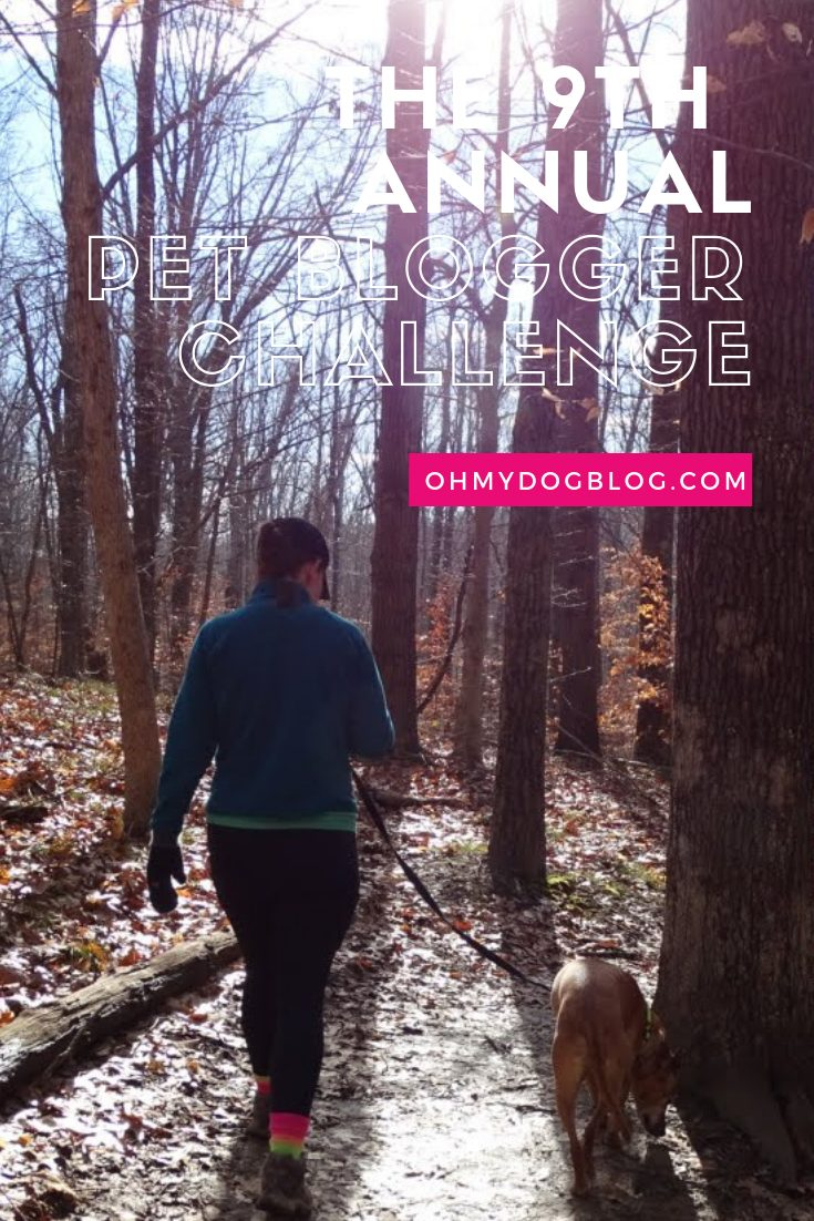 The 9th Annual Pet Blogger Challenge