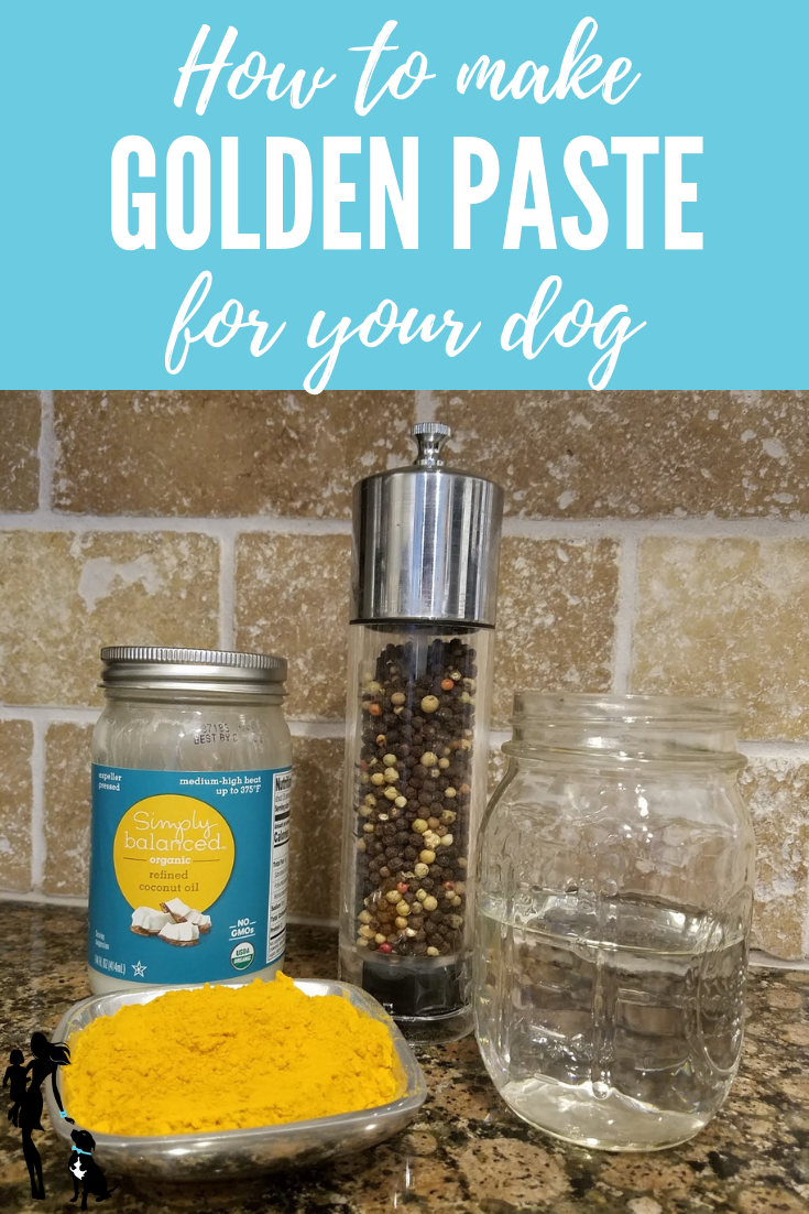 How to Make Golden Paste for Your Dog