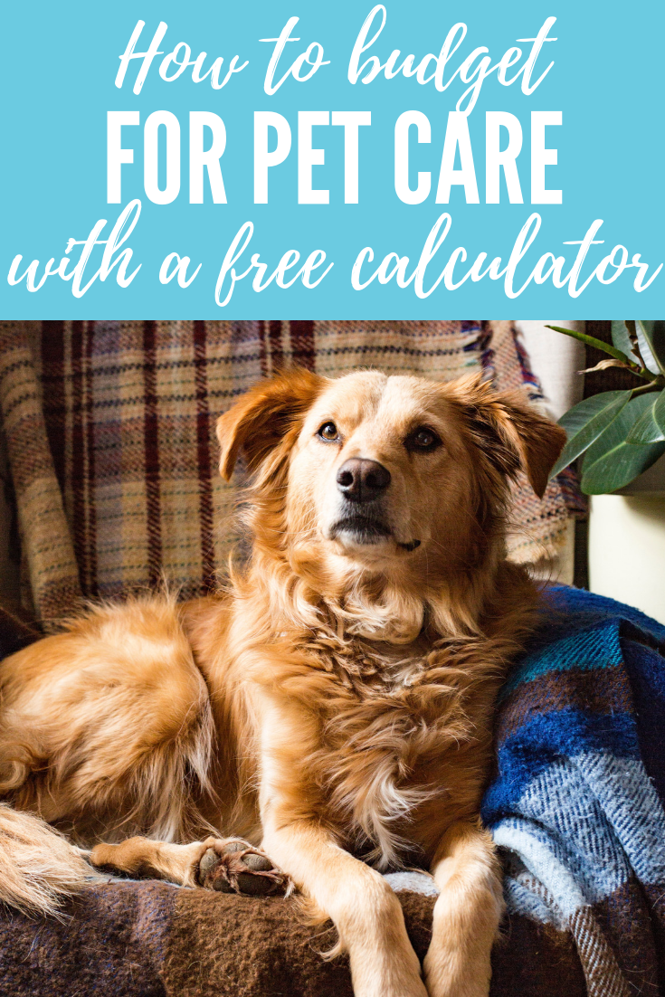 What's the real cost of owning a dog_ Tips to budget for pet care (including a FREE pet care budget tool)