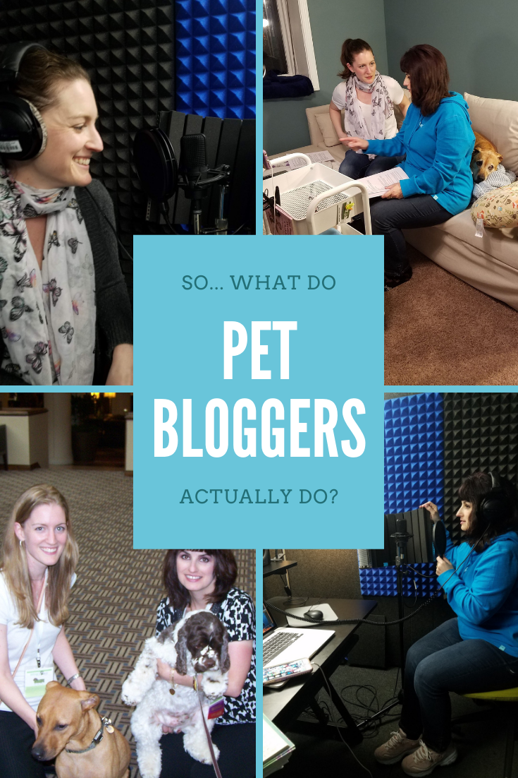 What do pet bloggers do? Well, now there's writing, photographing, graphic designing, podcasting, coding... Here's some insight into this growing industry!