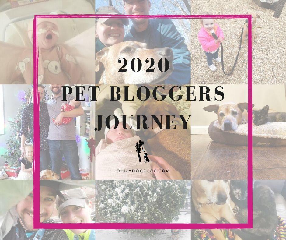 The 2020 Pet Bloggers Journey via OhMyDogBlog.com