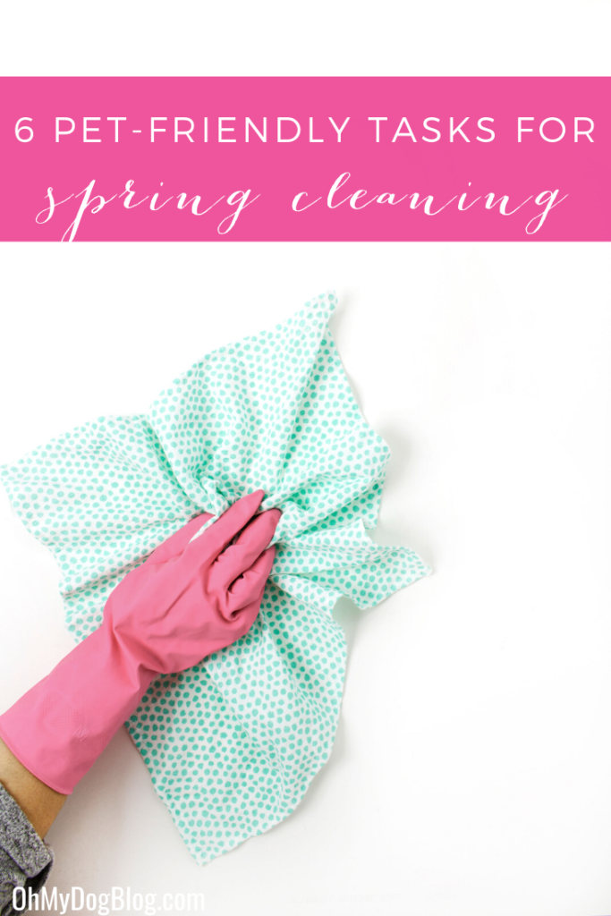 6 pet-friendly tasks to add to your spring  cleaning routine