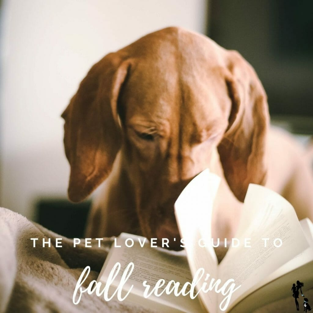 A dog lounges on a bed with a book propped in front of his nose. The text overlay says: The Pet Lover's Guide to Fall Reading.
