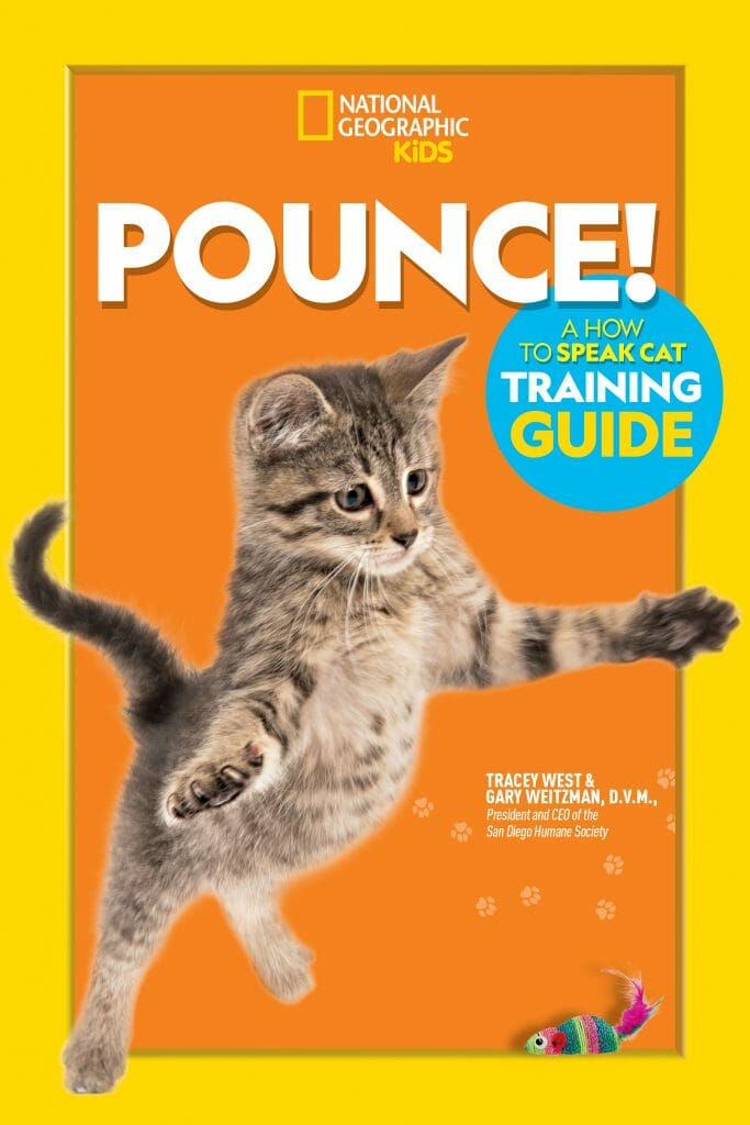 The cover of Pounce! shows a grey kitten jumping in the air to pounce on a colorful toy mouse.